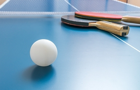 ping_pong_normandie_hotel_orne